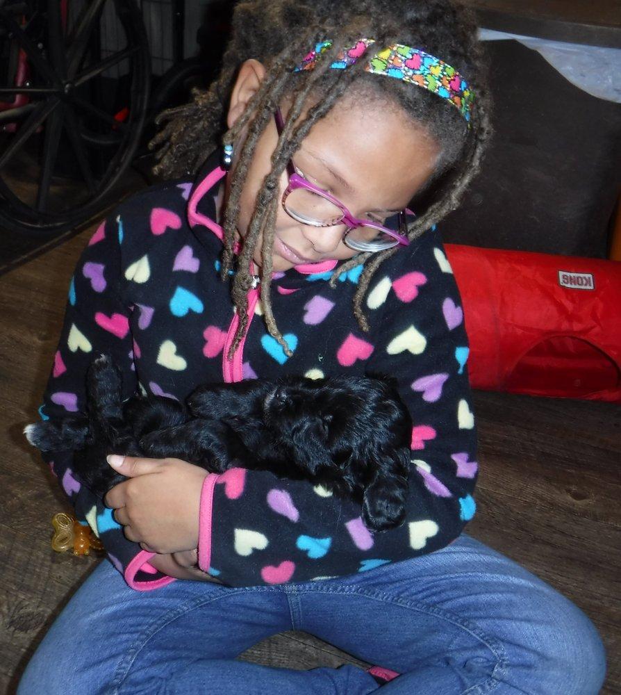 BFF Dog Training: 2720 Blotz Rd, Dodgeville, WI