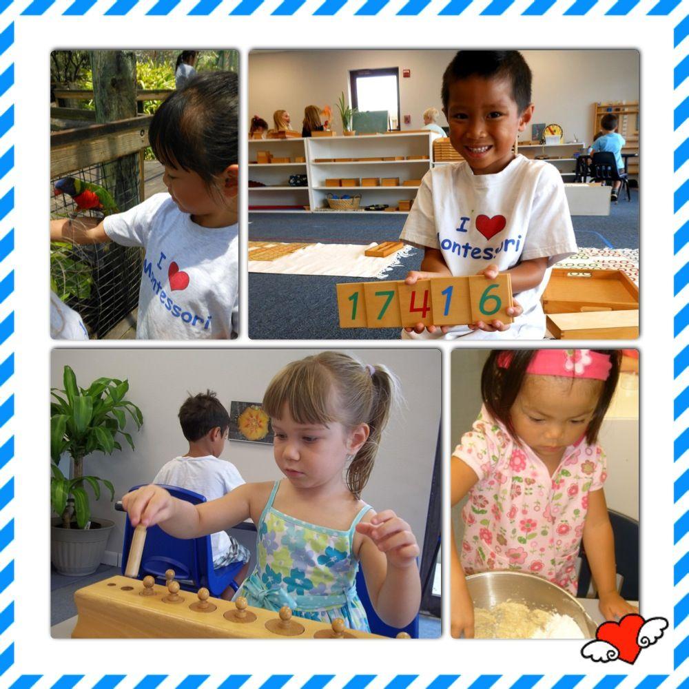 Brevard Montessori School: 1130 S Patrick Dr, Satellite Beach, FL