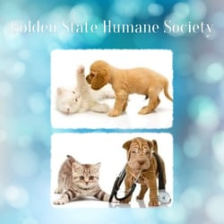 Photo Of Golden State Humane Society   Long Beach, CA, United States. Visit