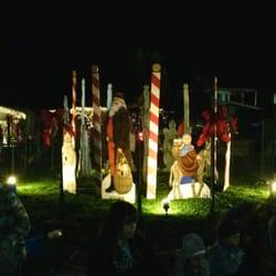 Image result for Christmas Tree Lane, Long Beach