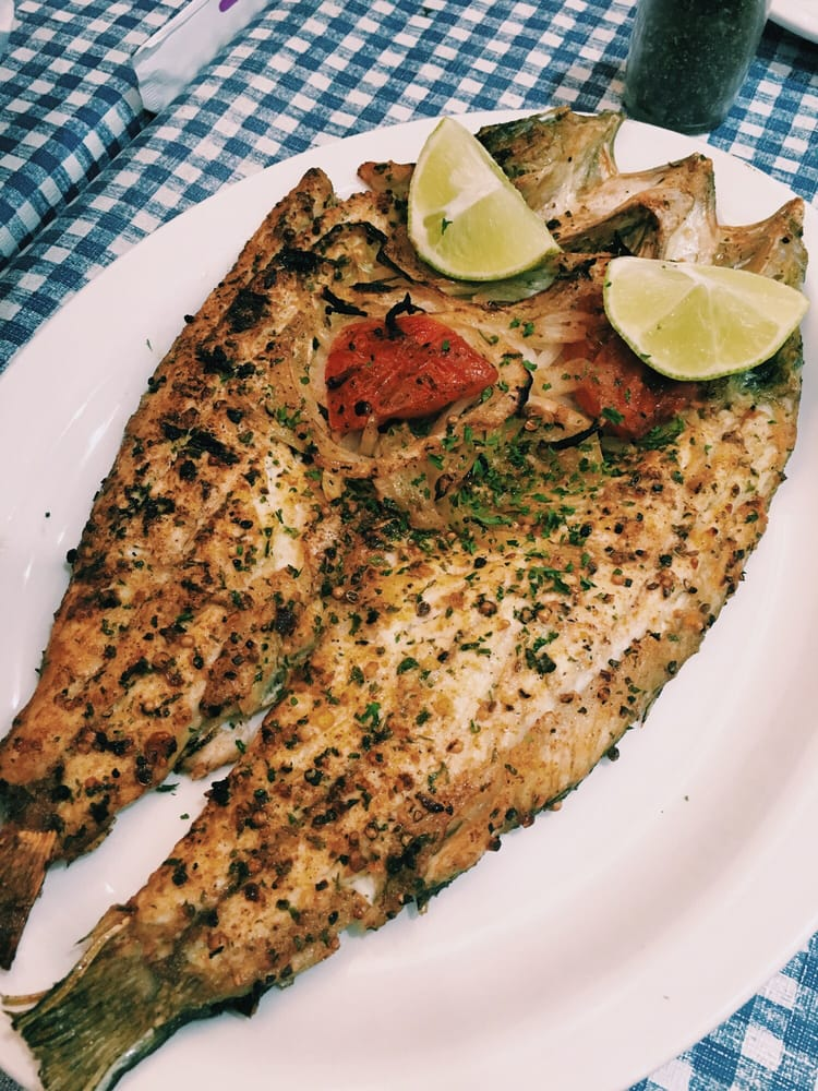 Sea bass singari style yelp for Elaine b fishing reports