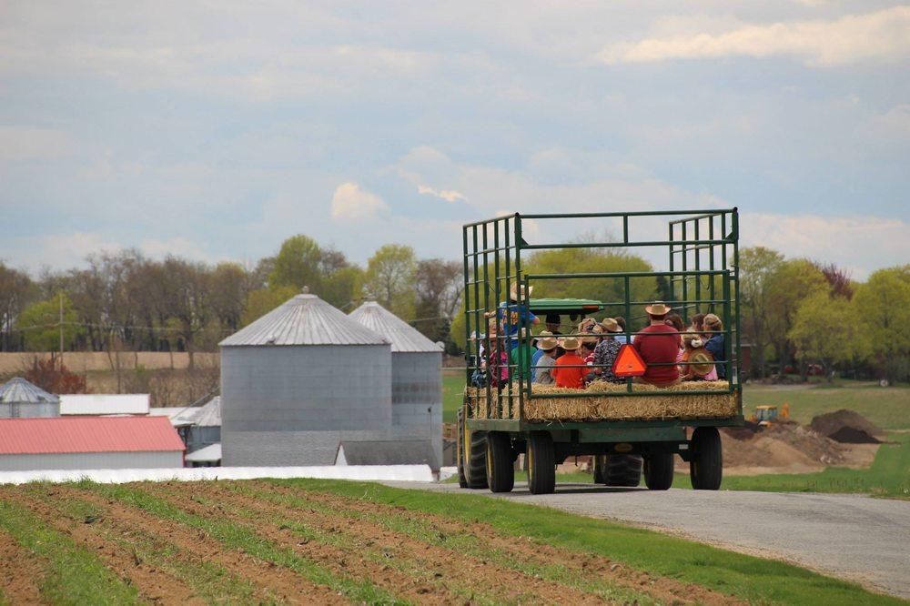Social Spots from Donaldson Farms