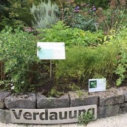 garten frankfurt, botanischer garten - 74 photos & 19 reviews - botanical gardens, Design ideen