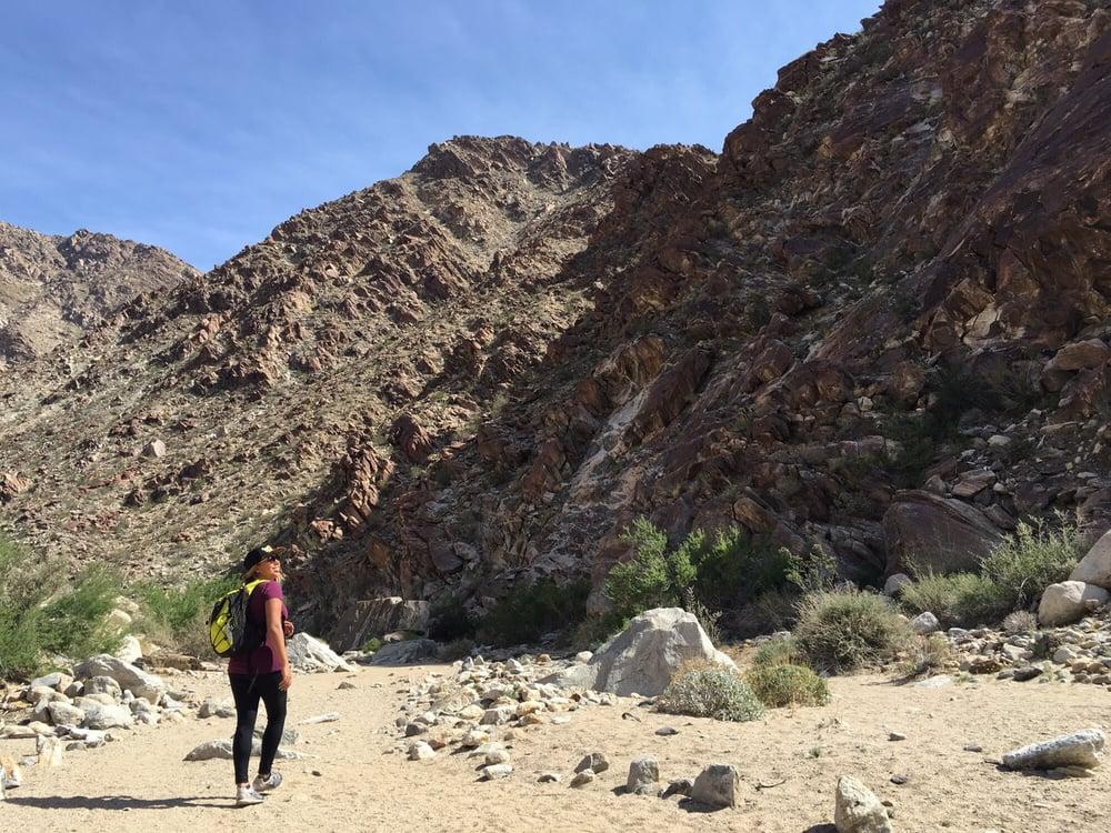 Photos For Borrego Palm Canyon Campground Yelp
