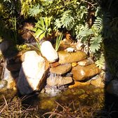 Photo Of El Plantio Nursery Landscaping Escondido Ca United States