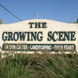 Image result for growing scene, inc. marengo il