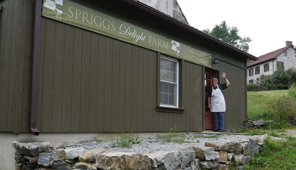 Spriggs Delight Farm: 6836 Tommytown Rd, Sharpsburg, MD