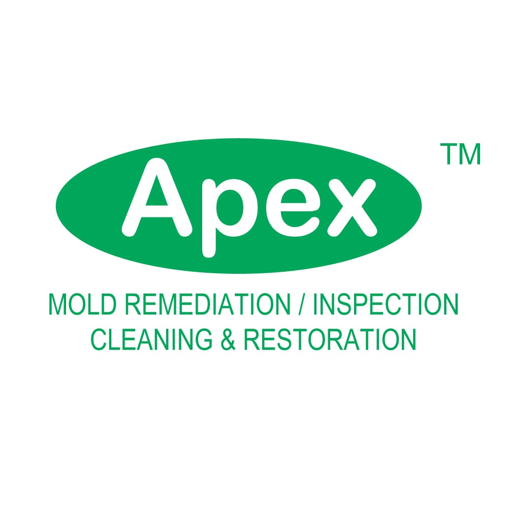 Apex Mold Specialists: 333 W 34th St, New York City, NY