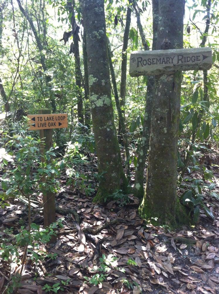 Photos for jacksonville arboretum and gardens yelp - Jacksonville arboretum and gardens ...