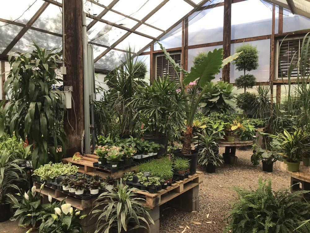 Greenhouse Houseplants Yelp