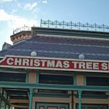 Christmas Tree Shops - Christmas Trees - 295 Old Oak St, Pembroke ...