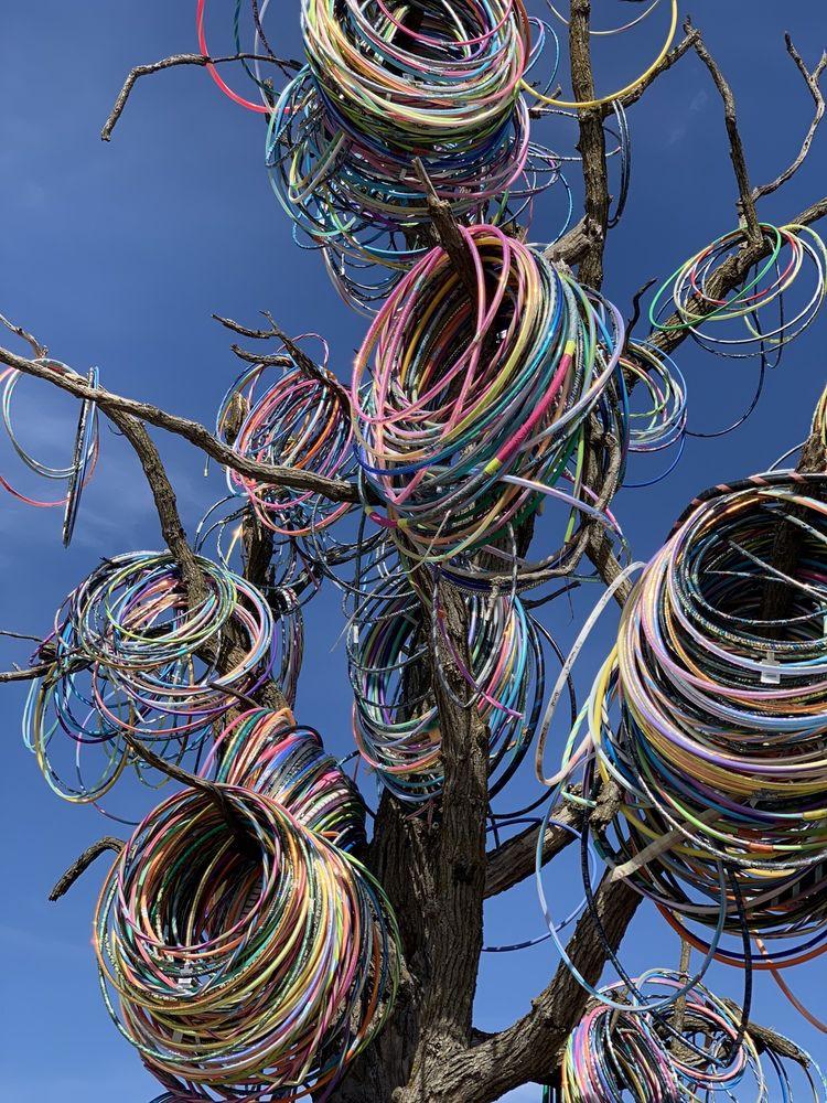 Hula Hoop Tree: E23 County Home Rd, Anamosa, IA