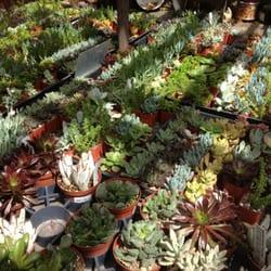 Armstrong Garden Centers Nurseries Gardening Carlsbad
