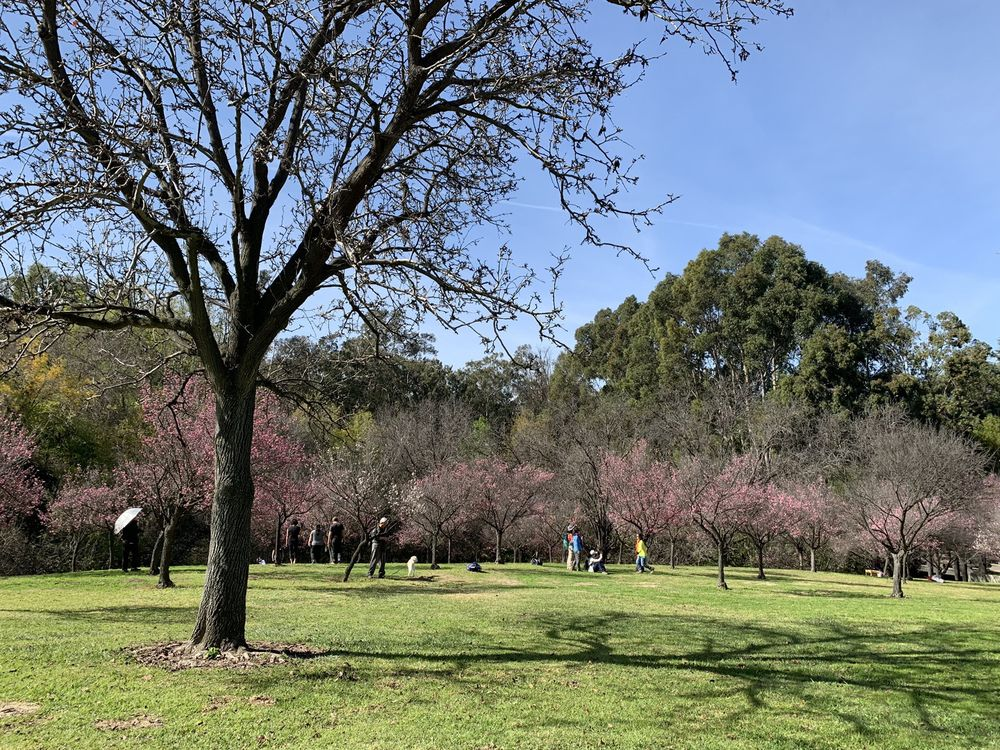 Schabarum Regional Park: 17250 E Colima Rd, Rowland Heights, CA