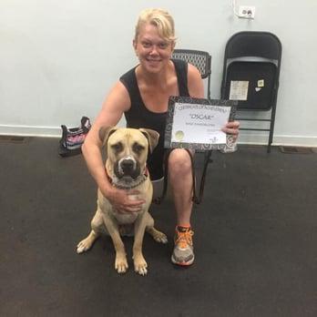 Positve Response Dog Training Review