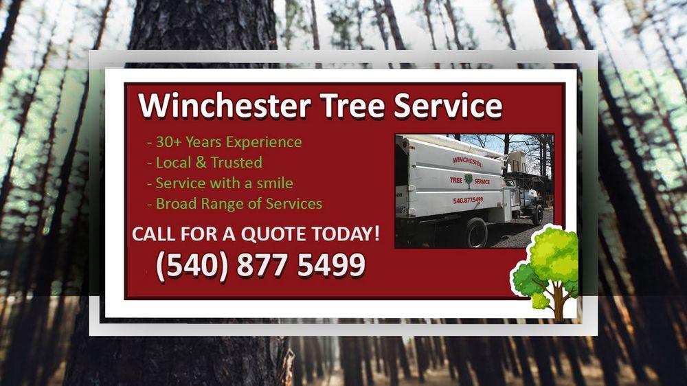 Winchester Tree Service: Cross Junction, VA