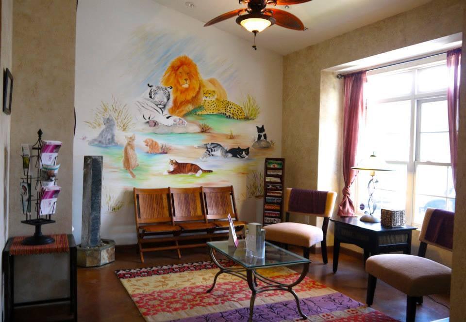 Fancy Paws Cat Clinic: 20608 Gordon Park Sq, Ashburn, VA