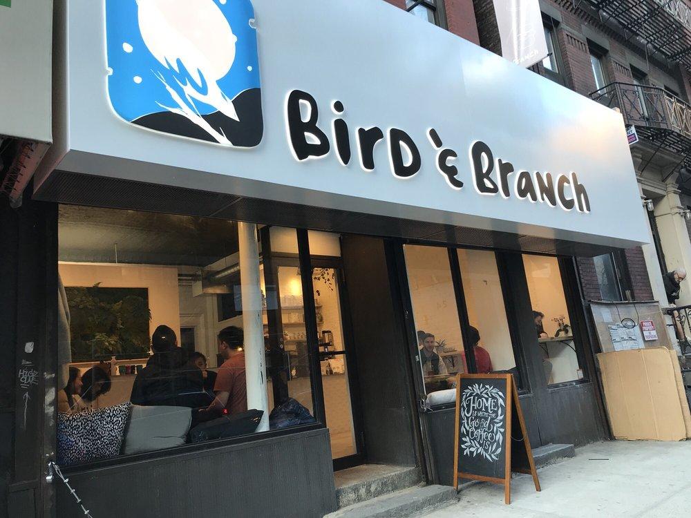 Bird & Branch O