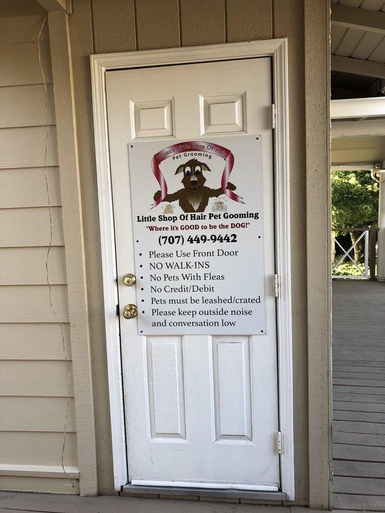 Teasa's Little Shop of Hair Pet Grooming: 590 Merchant St, Vacaville, CA