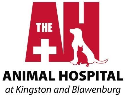 Animal Hospital at Kingston & Blawenburg: 4437 Rt 27, Kingston, NJ