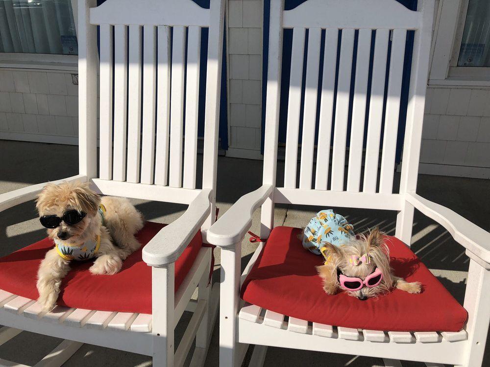 Adam's Oceanfront Resort: 4 Read St, Dewey Beach, DE