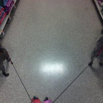 Dog Training Acworth Ga