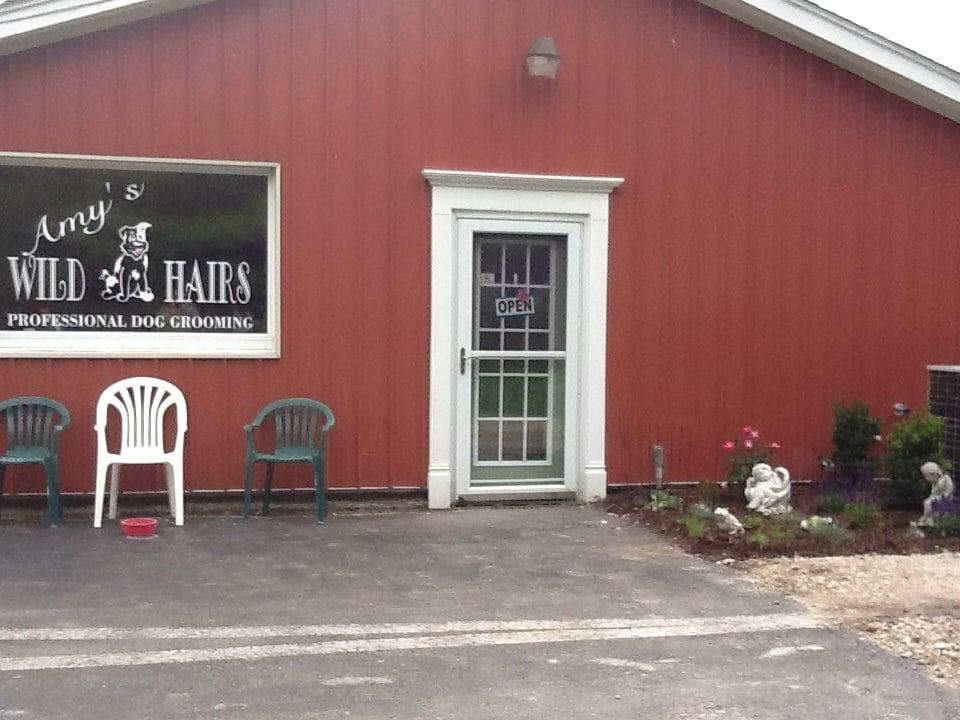 Amy' S Wild Hairs: 2N612 Landrose Ln, Maple Park, IL