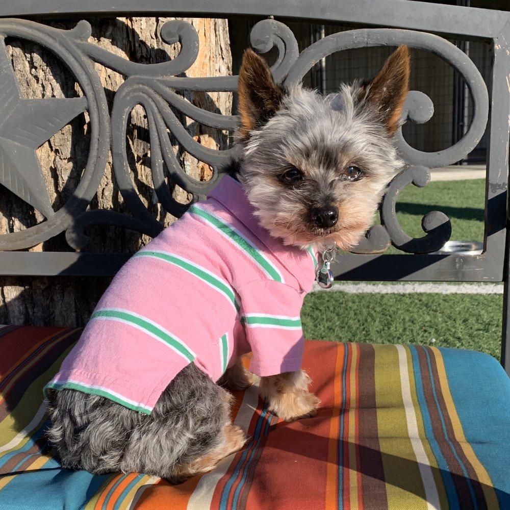 Lazy P Pet Ranch: 2858 S 127th E, Wichita, KS
