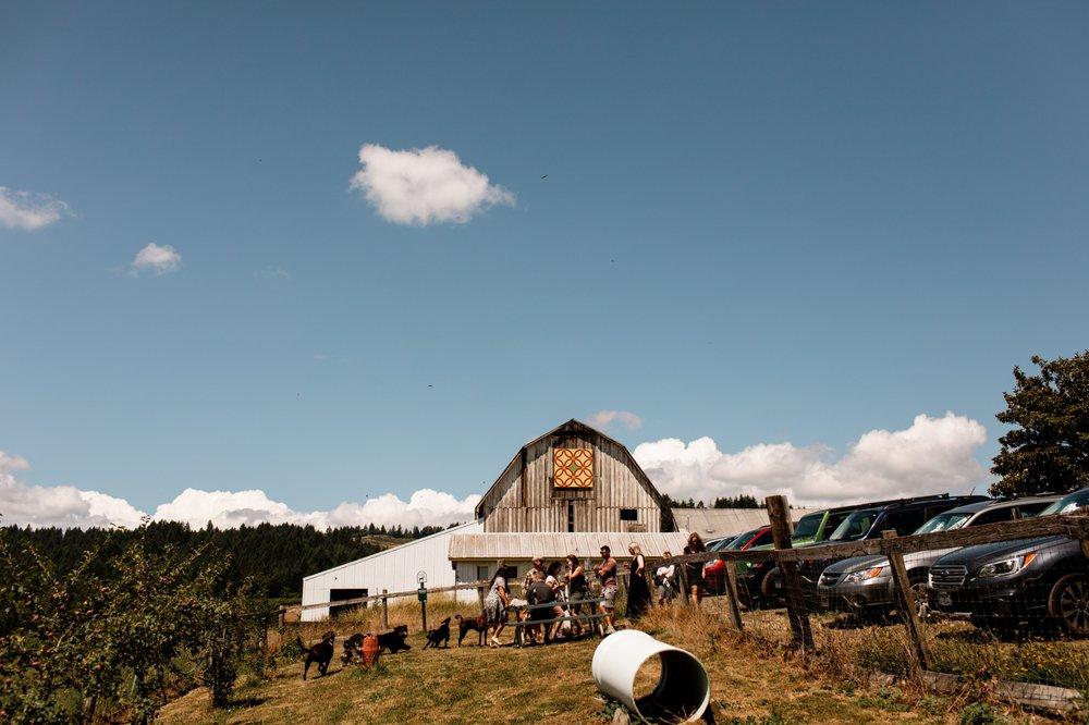 Social Spots from Plum Hill Vineyards