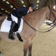 Busty riding academy