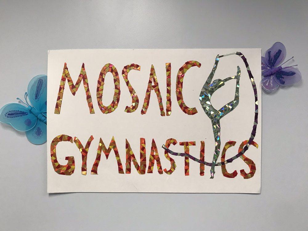 Mosaic Gymnastics: 8305 Merrifield Ave, Fairfax, VA