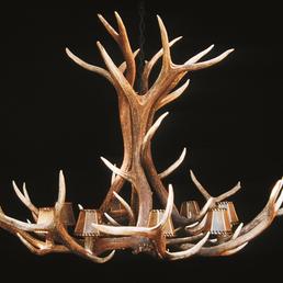 Photo Of Antler Chandeliers Lighting Company Stevensville Mt United States Elk