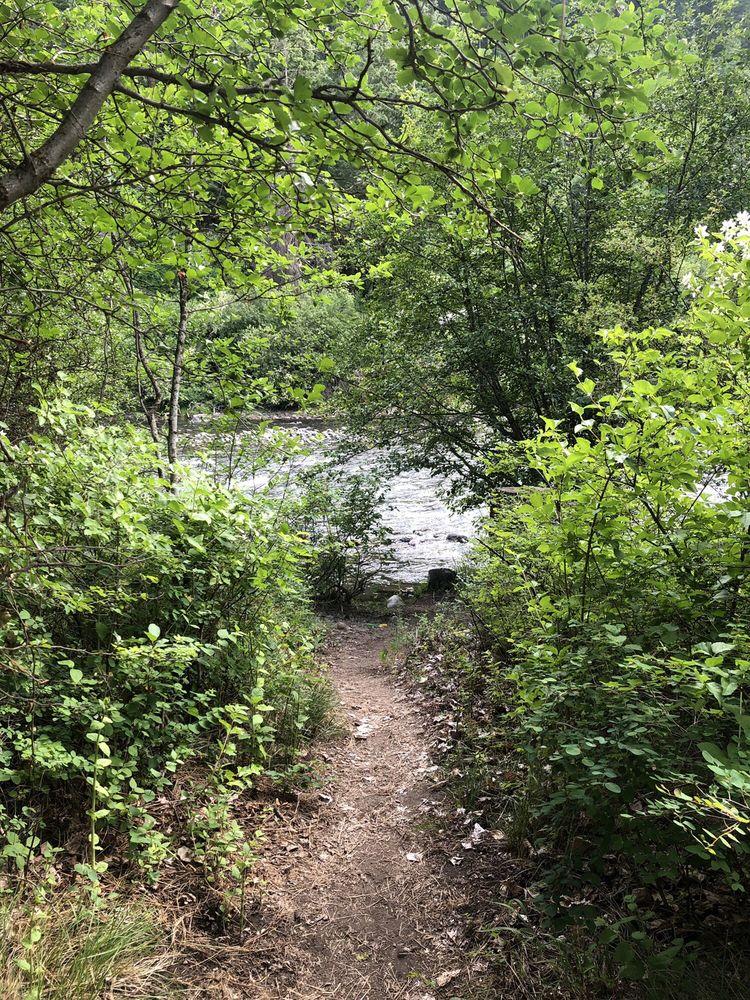 Cottonwood Campground: 17836 State Rte 410, Naches, WA