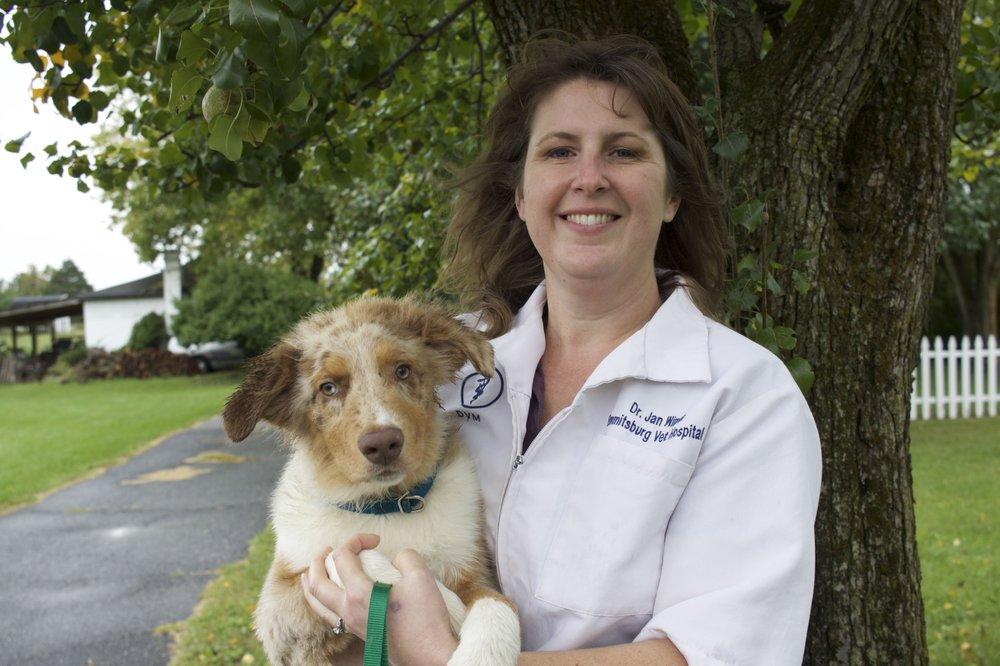 Emmitsburg Veterinary Hospital: 9436B Waynesboro Pike, Emmitsburg, MD