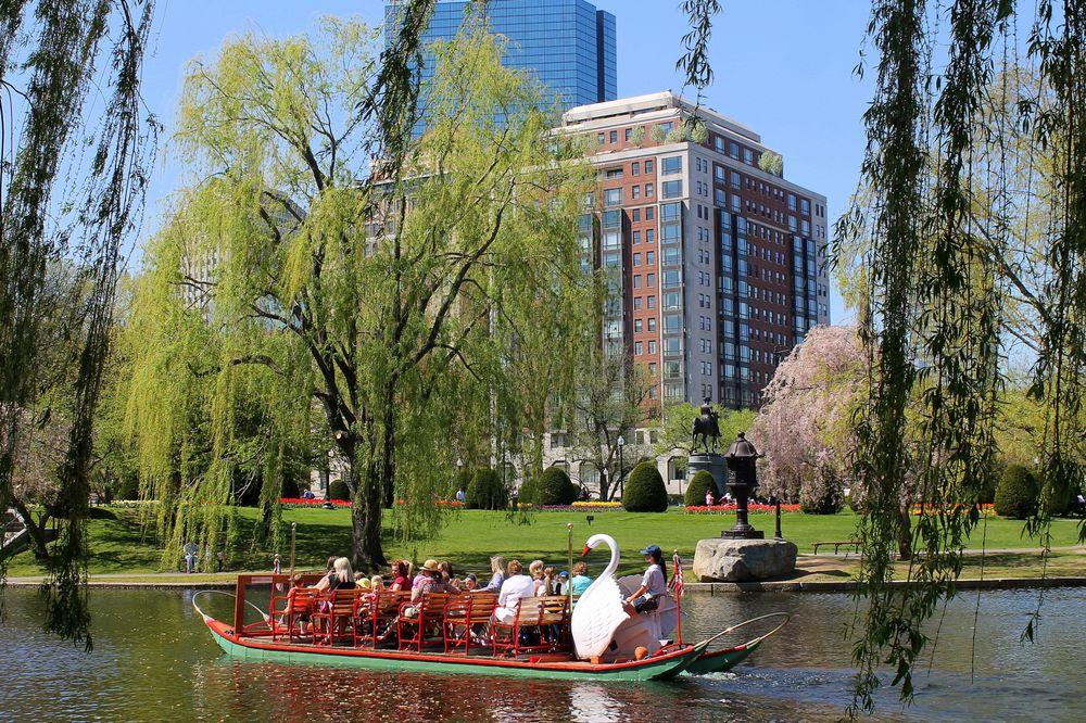 Swan Boats of Boston: Boston Public Garden, Boston, MA