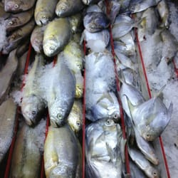 Super g mart 113 fotos y 65 rese as abarrotes 4927 w for Fish market greensboro nc