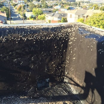 Photo Of Roof Rx   San Bruno, CA, United States. Look At This