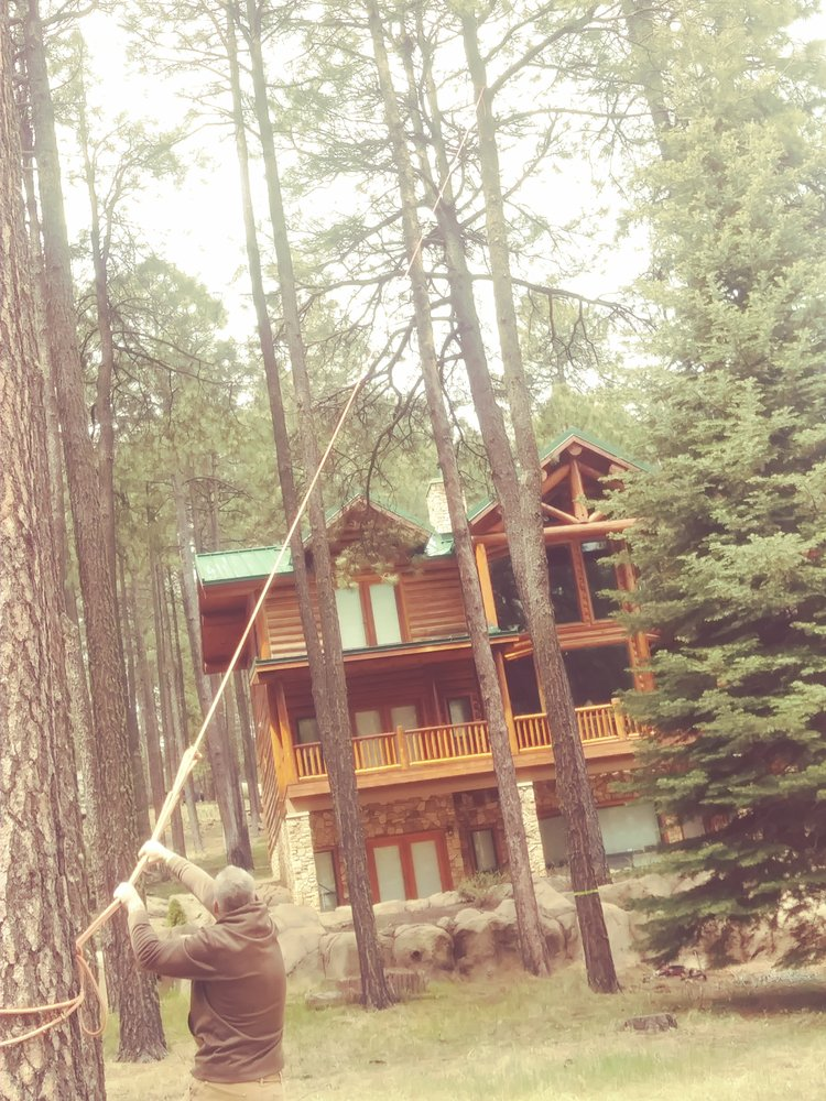 At your service cleaning and tree service: 1910 N McLane Rd, Payson, AZ