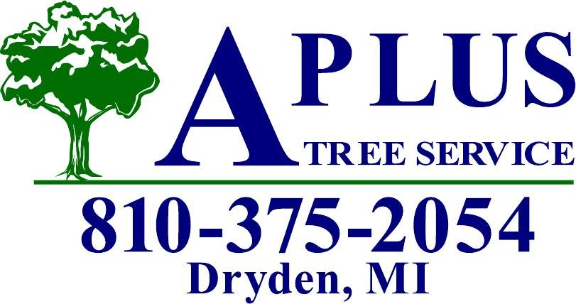A Plus Tree Service: Dryden, MI