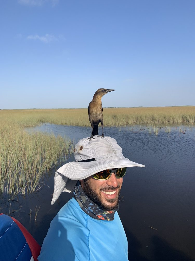 Everglades Nature Tours