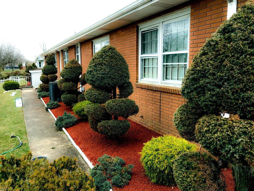 Good Cuts Landscaping & Tree Service: Port Norris, NJ