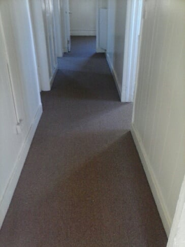 Commercial carpet low density great for high traffic areas for Carpet for high traffic areas