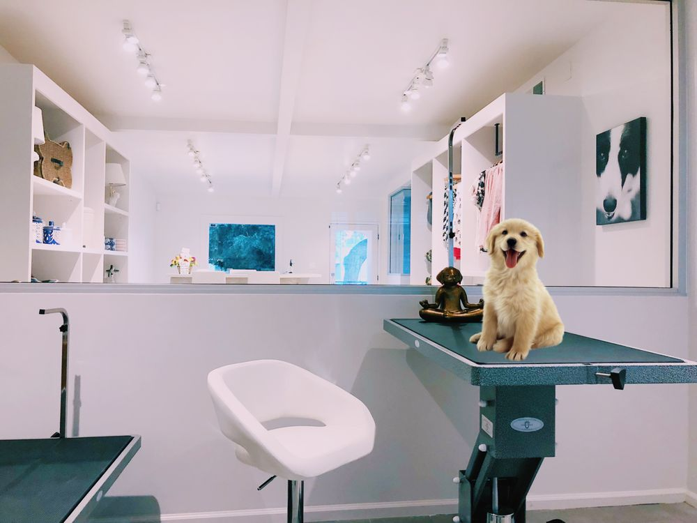 Groom - Dog Care With Love: 9061 Nemo St, West Hollywood, CA