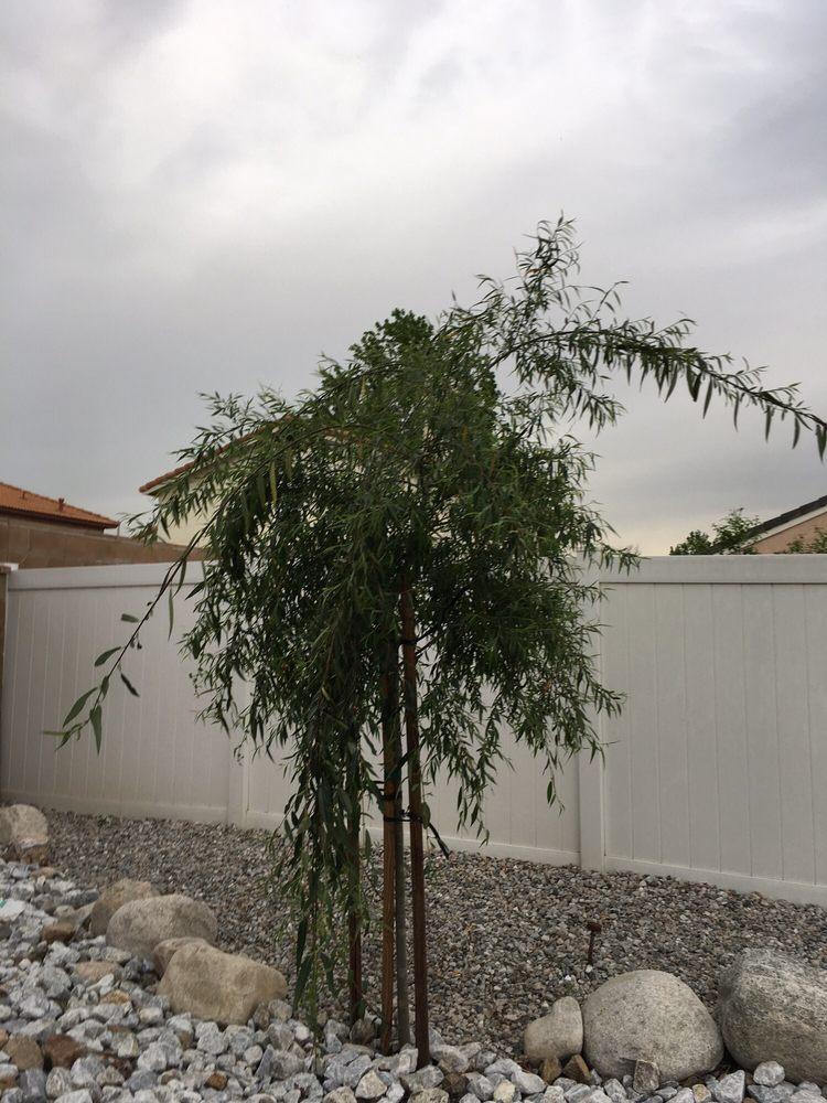 Schubert Landscaping: 7740 Calhoun Rd, Highland, CA