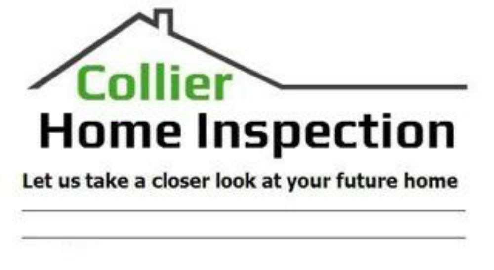 Collier Home Inspection: Hyde Park, NY