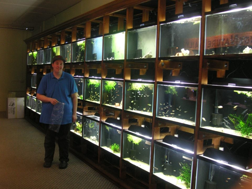 Store Owner Cory Showing Off His Lovely Display Tanks