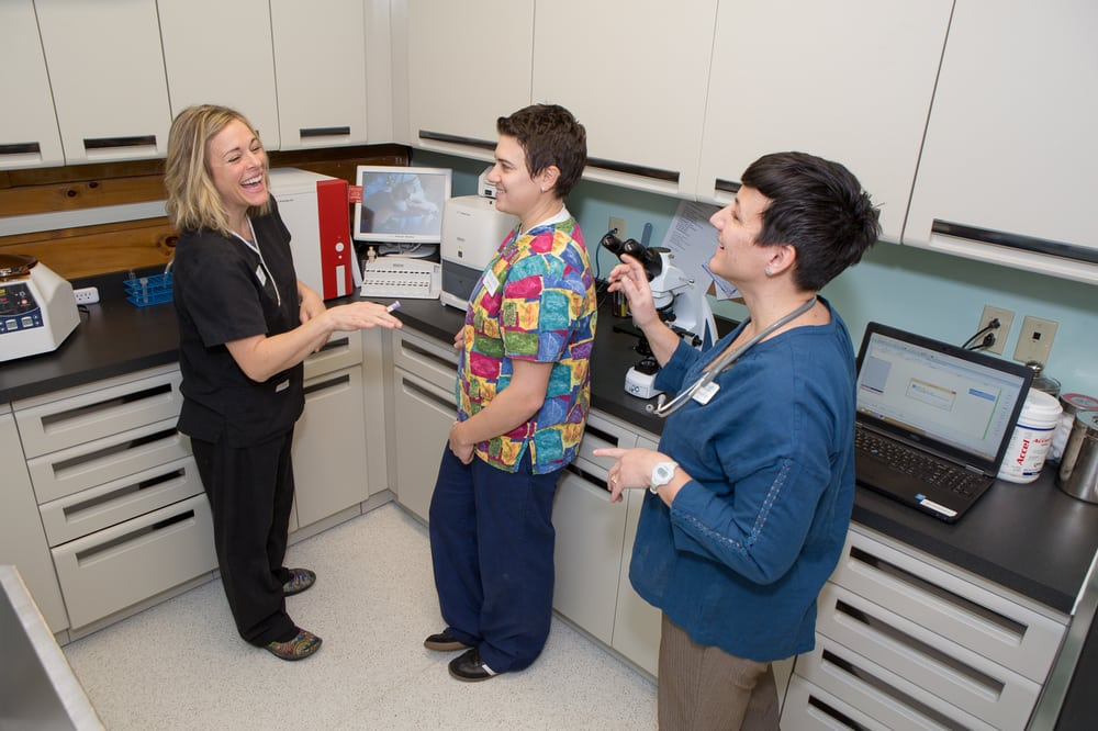 True North Veterinary Hospital: 1053 US Rte 302, Bartlett, NH