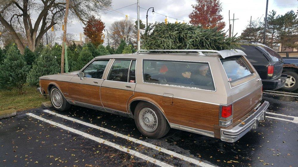 Fred Stempky Nursery Fresh Cut Trees: 35175 Plymouth Rd, Livonia, MI