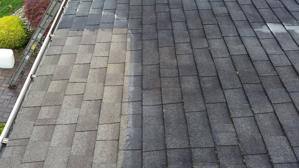 Superior Roof Cleaning: Belchertown, MA