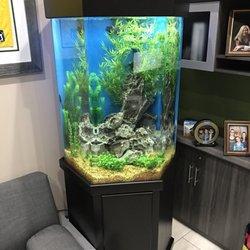 Infinity Aquarium Design - Aquarium Services - Las Vegas, NV - Phone ...